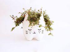 Cum sa creezi o masca simpatica pentru ghiveciul de flori