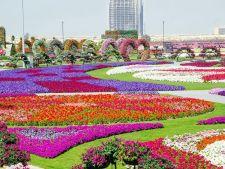 Gradinile Miraculoase din Dubai, o oaza verde in mijlocul desertului