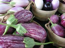 Conserva de vinete si gogosari in otet, un deliciu in timpul iernii