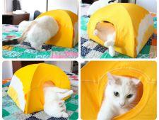 Cum sa construiesti o casuta pentru pisica VIDEO