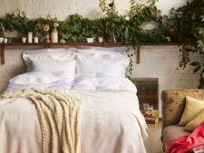 5 plante de dormitor pentru un somn odihnitor. Afla care plante te ajuta sa te relaxezi