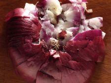 Ceapa rosie, tratament minune pentru firele albe