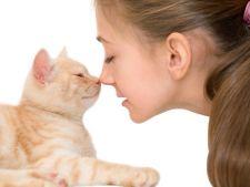Pisica te iubeste mai mult decat crezi! Descoperirea facuta de cercetatori