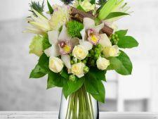 Expertul Acasa.ro, Andreea Uceanu: Flori de toamna cu aer regal