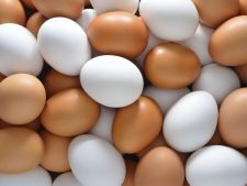 Eggs, useful in cleanliness House  ! 3 ways in that you can use