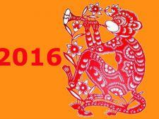 2016, anul Maimutei de Foc! Cum te influenteaza in functie de zodie