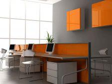 Organizarea eficienta a design-ului pentru crearea unui spatiu armonios