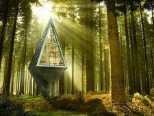 3 case uimitoare, construite in copaci! Ai da orice sa fie ale tale