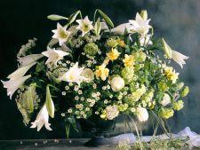 6 secrete pe care nu ti le spune nimeni despre flori