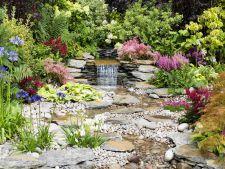 Cascadele, centrul de atractie al unei gradini relaxante