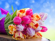 Tulips, the symbol of spring! What to do for the resist may much in vase