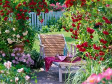 A  , Perfumed Garden place perfect for relaxation