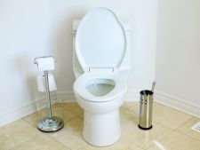 What you need to do the your   if is toilet historical context