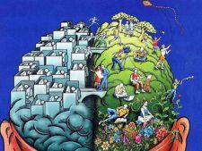 Cati pitici ai pe creier in functie de zodie