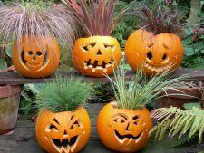 5 moduri originale in care poti decora dovlecii pentru Halloween