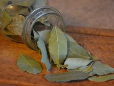 Frunzele de dafin, un miracol pentru casa ta