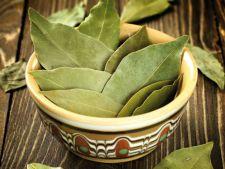 Gateste cu frunze de dafin! Frunzele care dau aroma mancarurilor tale, miracol pentru sanatate