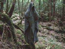 Padurea in care nimeni nu indrazneste sa intre! Ascunde un secret teribil! Tu ai curaj?