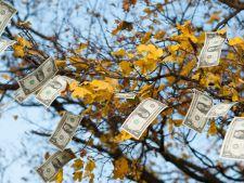 Horoscopul carierei in luna noiembrie 2016: afla daca ai noroc in afaceri si bani