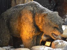 "Mamuti, tigri, rinoceri in marimi naturale, la expozitia ""Epoca de Gheata"""