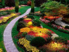 Cum sa creezi o gradina frumoasa, practica si multifunctionala