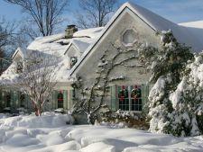Calendarul gradinarului pentru luna decembrie! Nu neglija gradina in prima luna de iarna