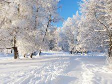 Superstitii! Luna ianuarie prezice cum va fi vremea in timpul verii