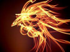 Intram in Noul An chinezesc. Afla ce-ti aduce Anul Cocosului de Foc