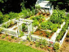 Cum sa pregatesti gradina pentru plantarea noilor culturi