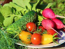 Ghid de plantare a legumelor! Cand plantezi primele rasaduri