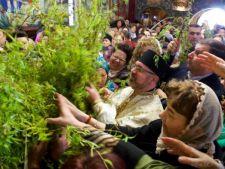 Traditii de Florii: De ce este bine sa aduci salcie in casa ta
