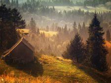Casute de vis in mijlocul naturii! Care este preferata ta?