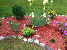 Idei pentru amenajarea gradinii cu ajutorul mulciului rosu. Le vei adora