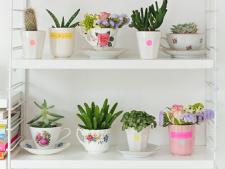 Cestile vechi, ideale pentru plantarea florilor! Cum iti poti inviora terasa sau casa