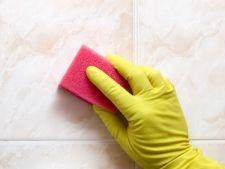 Cum sa scapi rapid de mucegaiul din casa si cum previi formarea acestuia
