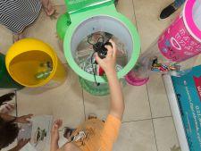 ENVIRON 10 ani: 50.000 tone deseuri electrice reciclate