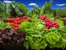 3 legume delicioase pe care le poti planta in gradina chiar acum