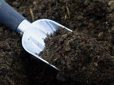 Toamna, momentul perfect pentru a pregati solul pentru primavara