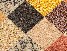 Expertul Acasa.ro, Elisabeta Ratiu: Amarant, orz, hrisca, kamut... Topul cerealelor energizante