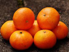 Tu stii cum sa alegi portocalele? Iata cum iti dai seama cand sunt coapte