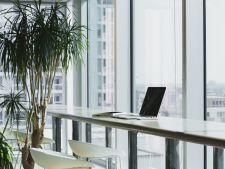 Cum ne imbolnaveste lucrul la birou! Aerul din cladiri, de doua ori mai periculos decat cel din exterior