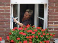 3 trucuri eficiente, 100% naturale ce te vor ajuta sa cureti geamurile fara sa apelezi la chimicale