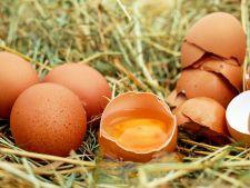 Tu stii cum poti verifica daca ouale de Paste sunt proaspete?