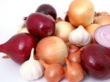 Cultivarea legumelor bulboase, ceapa, praz, usturoi