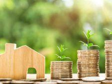 Amenajarea casei din propriile economii?