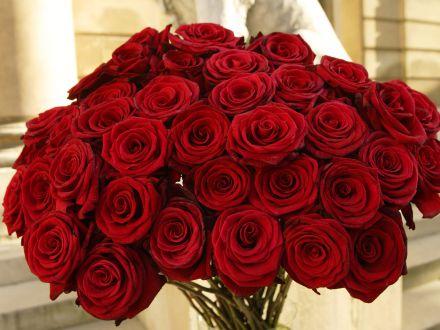 3 flori pe care le poti face cadou de Valentine's Day