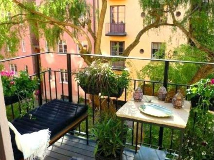 3 plante pe care trebuie sa le ai in balcon anul acesta