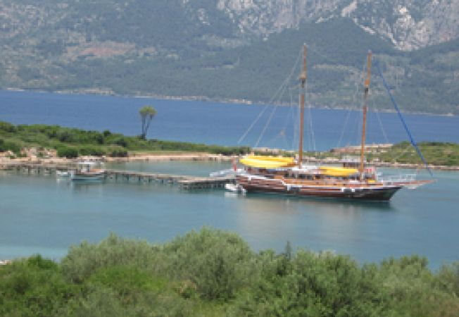 Turcia exclusivista,Insula Cleopatrei