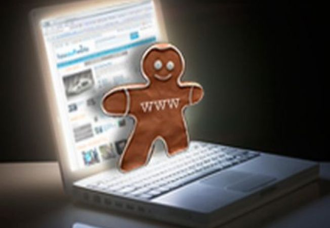 internet cookie browser web