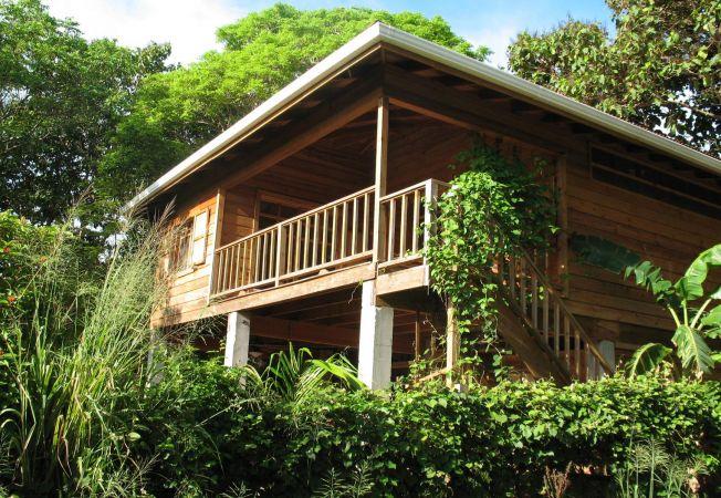 7 mituri despre casele eco for Design eco casa verde